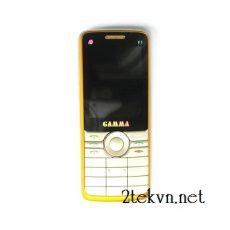 Gamma F1