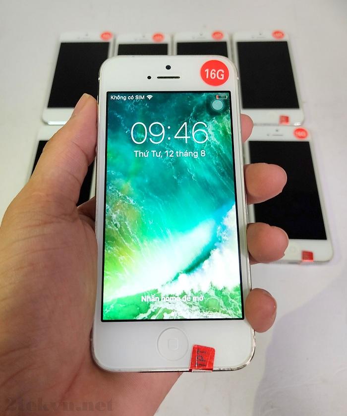 iPhone 5 được trang bị màn hình màu rộng 4 inch